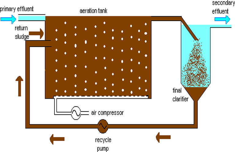 Role of the Biofilms in Wastewater Treatment | IntechOpen