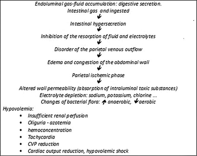 Management of Intestinal Obstruction | IntechOpen