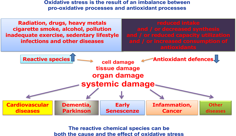 Redoxomics and Oxidative Stress: From the Basic Research to