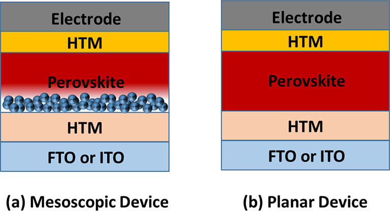Fig on Cell Structure Diagram