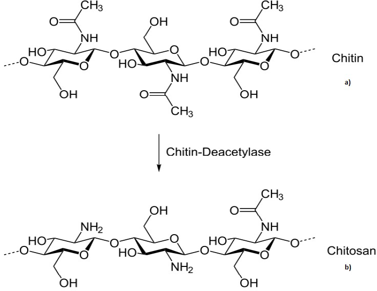 Applications of Chitosan in Wastewater Treatment | IntechOpen