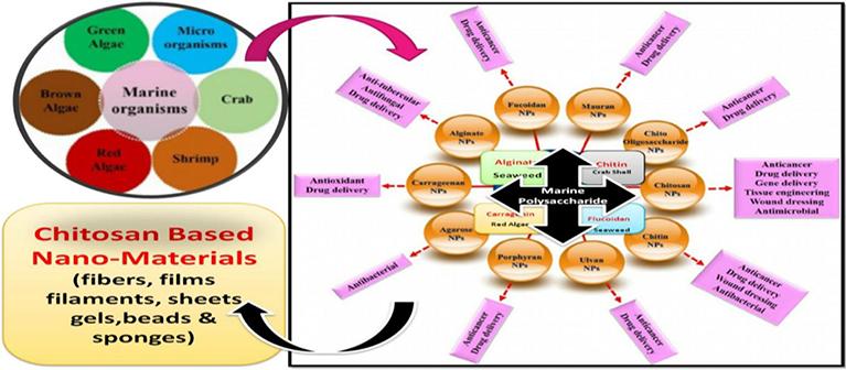 Marine Polysaccharides: Food Applications