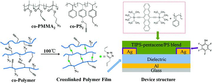 Polymer Dielectric In Organic Field U2010effect Transistor