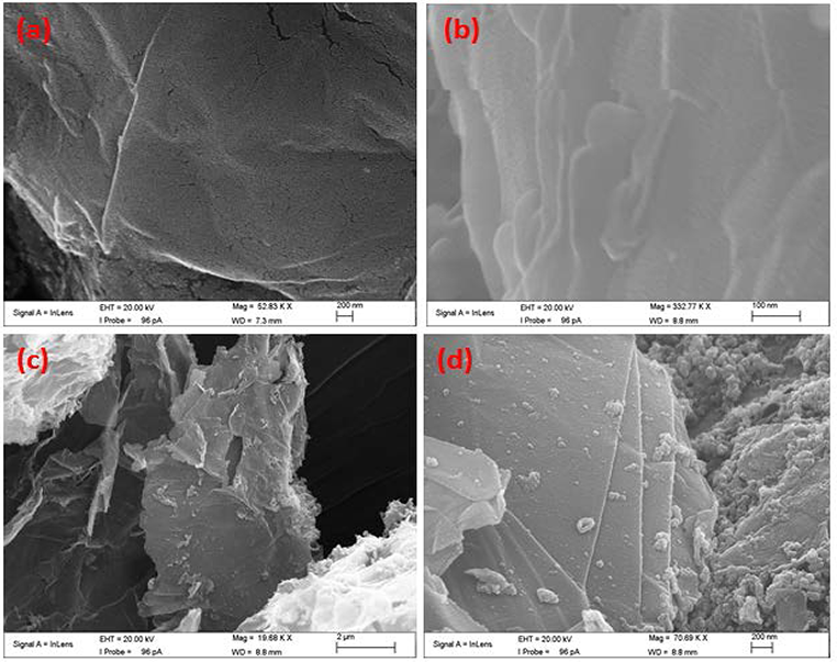 Covalently Functionalized Nano-Graphene Oxide for Fine