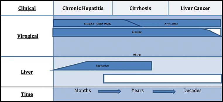 Treatment of Chronic Hepatitis B: An Update and Prospect for Cure