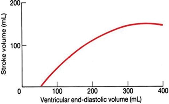 describe how the heart alters stroke volume