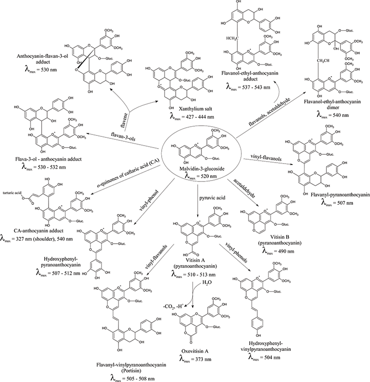 Flavonoid Phenolics In Red Winemaking