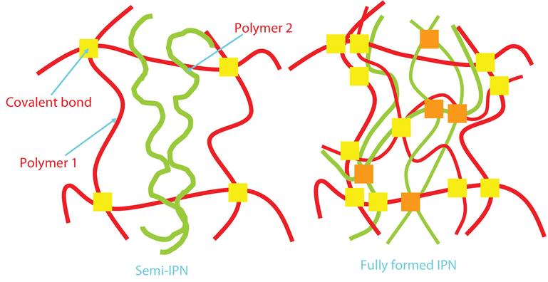 Polyurethane Epoxy Interpenetrating Polymer Network