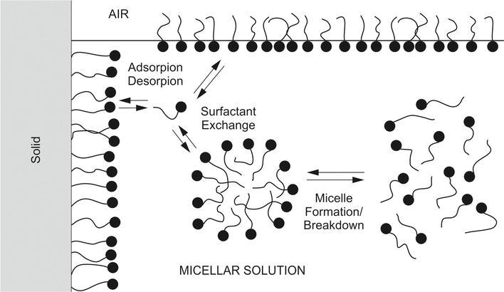 Saponin-Based, Biological-Active Surfactants from Plants