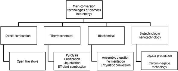 Biomass as an Alternative for Gas Production   IntechOpen