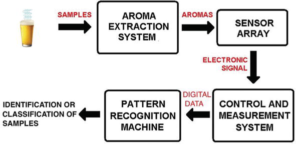 electronic noses applications in beer technology