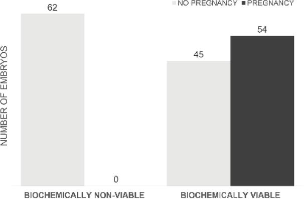 Non‐Invasive Assessment of the Embryo Viability via the Analysis of
