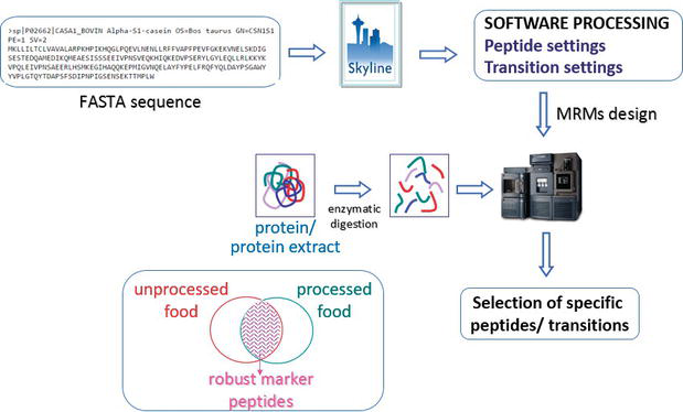 Food Allergen Analysis: Detection, Quantification and Validation by
