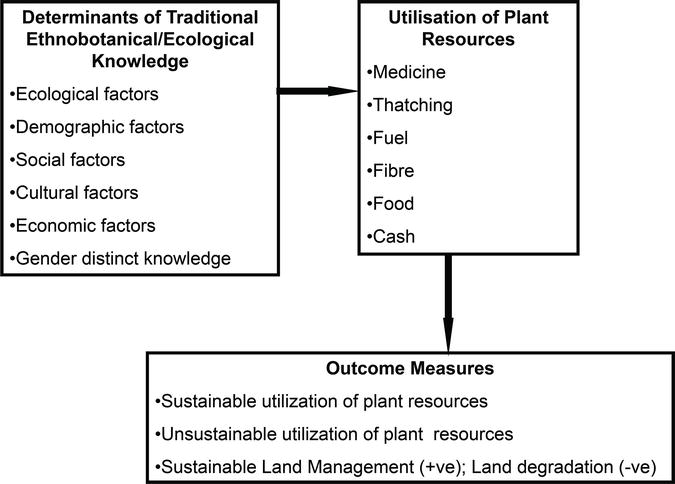 Role of Traditional Ethnobotanical Knowledge and Indigenous