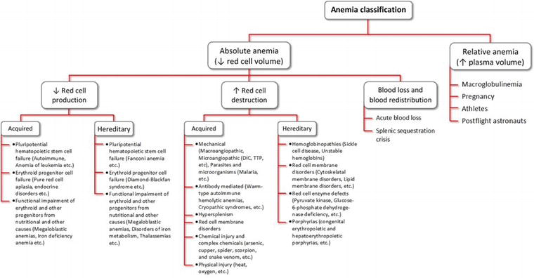 Laboratory Approach to Anemia | IntechOpen