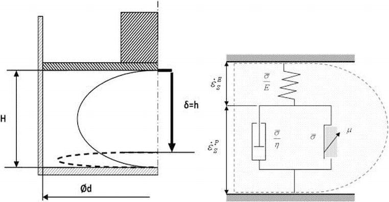 Application of Mechanics to Plant Seeds as a Granular or