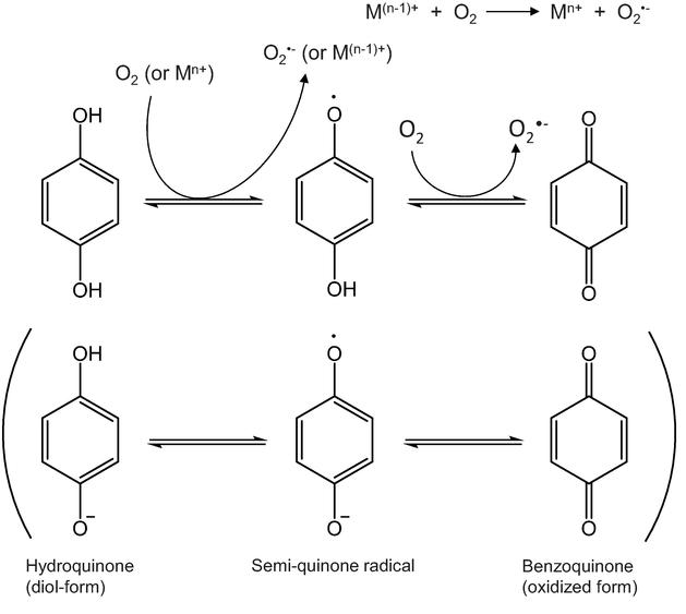 Biomolecules Oxidation By Hydrogen Peroxide And Singlet Oxygen