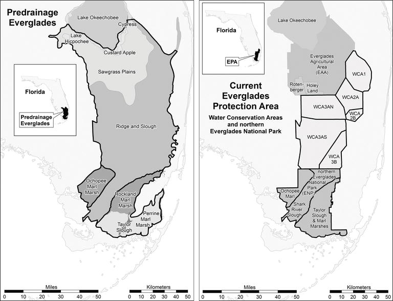 Peat Soils of the Everglades of Florida, USA | IntechOpen on map of northern adirondacks, map of northern chesapeake bay, map of northern yellowstone, map of northern pinellas county, map of northern florida towns,