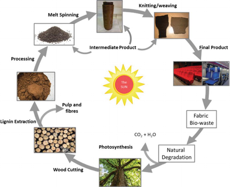 An Overview on the Use of Lignin and Its Derivatives in Fire