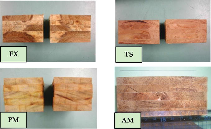 A Review of Isocyanate Wood Adhesive: A Case Study in Indonesia