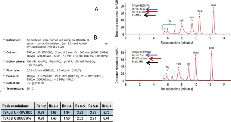 Separation of Monoclonal Antibodies by Analytical Size