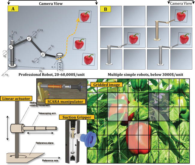Robotic Harvesting of Fruiting Vegetables: A Simulation Approach in