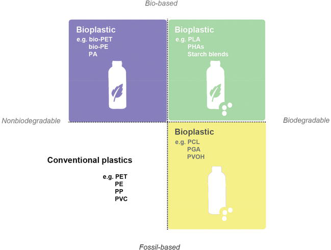 Prospective Biodegradable Plastics from Biomass Conversion