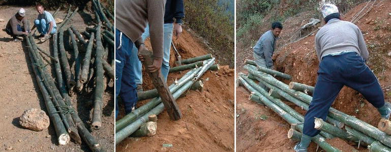 The Use of Bamboo for Erosion Control and Slope Stabilization: Soil