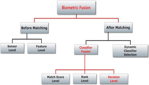 A Survey on Soft Biometrics for Human Identification