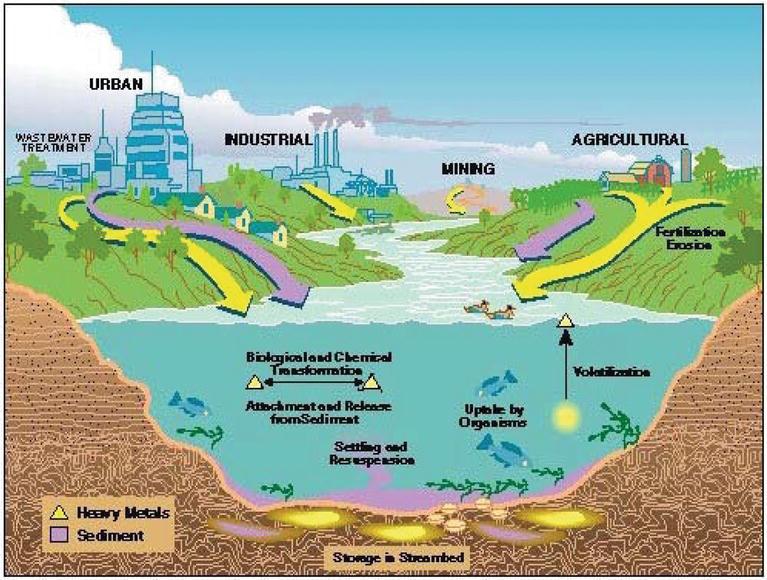 Environmental Contamination by Heavy Metals   IntechOpen