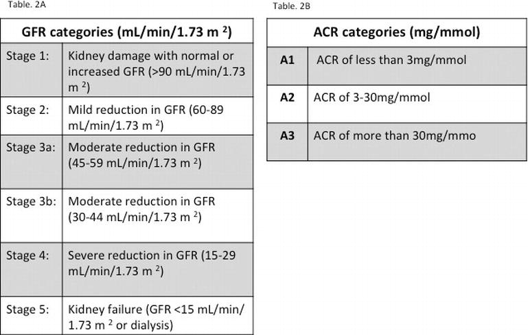 Sickle Cell Nephropathy: Current Understanding of the