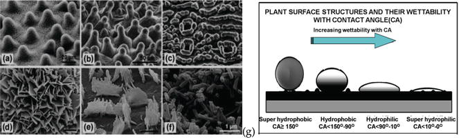 Silver Nanoparticles: Synthesis, Characterization and