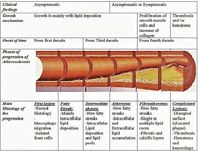 Focus On Coronary Atherosclerosis