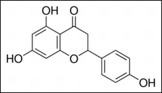 Savior Of Diabetes Antioxidants