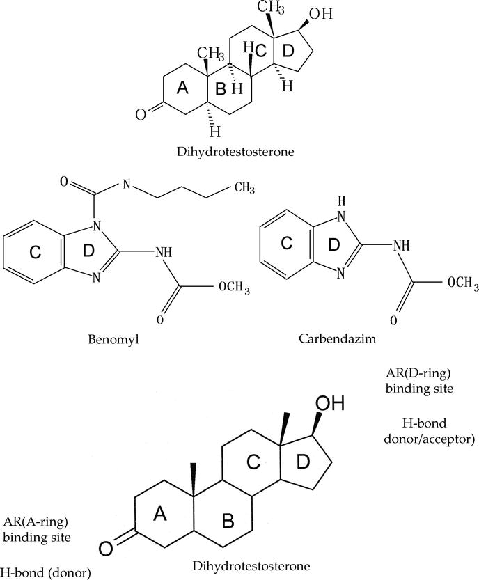 Androgen Receptor Plays A Vital Role In Benomyl Or Carbendazim