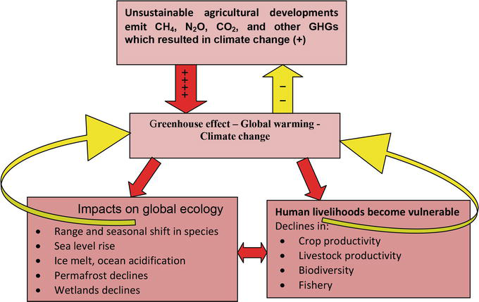 Observed and Projected Reciprocate Effects of Agriculture