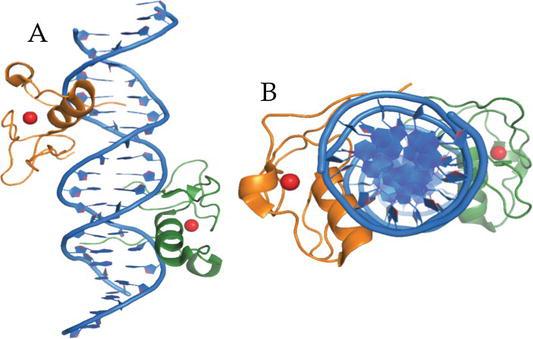 Editorial Sharing Epigenomes Globally >> Epigenome Editing Intechopen