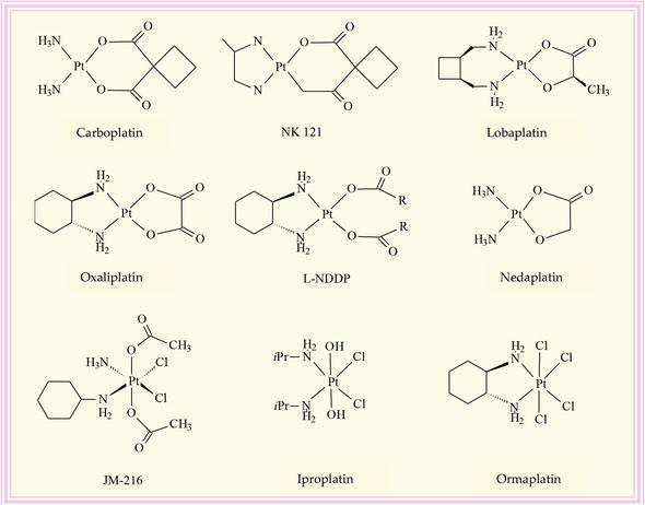 Mechanism of Interactions of Zinc(II) and Copper(II