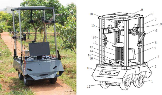 Agricultural Robot for Intelligent Detection of Pyralidae