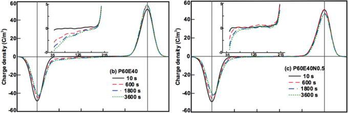 A Review of Polypropylene and Polypropylene/Inorganic