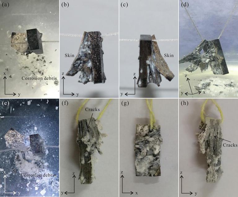 Corrosion Types of Magnesium Alloys | IntechOpen