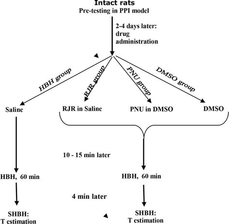 Hypoxic Preconditioning: The Multiplicity of Central