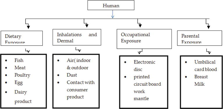 Dioxin and Furan Emissions and Its Management Practices