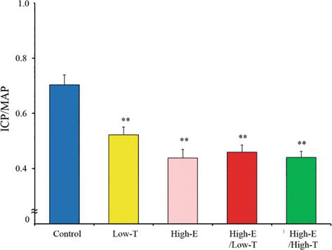 Estrogen for Male Function: Effect of Changes in the Sex
