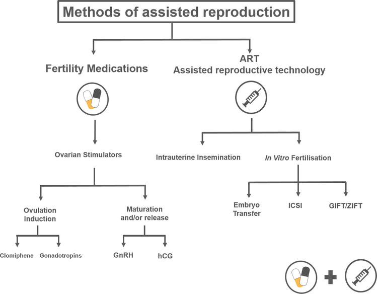 Medically Assisted Reproduction and the Risk of Adverse