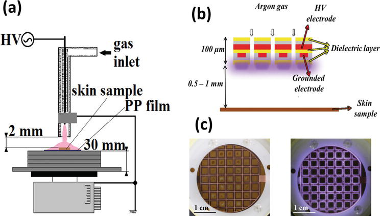 Applications of Dielectric Barrier Discharge Microplasma