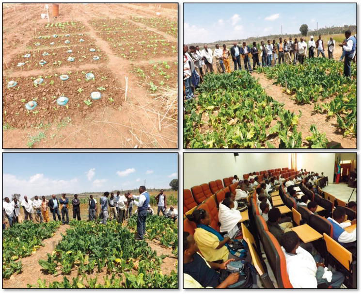 Water Replenishment in Agricultural Soils: Dissemination of