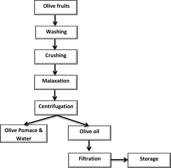 Emerging Extraction Technologies In Olive Oil Production Intechopen