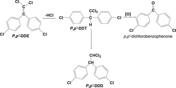 Degradation Pathways of Persistent Organic Pollutants (POPs