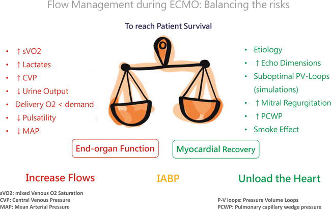 Evaluation Of Potential Living Kidney Donors Intechopen
